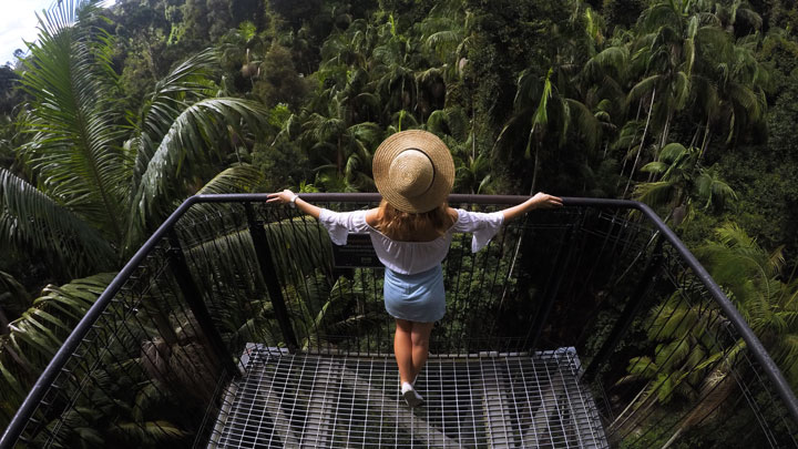Woman overlooking rainforest from a viewing platform